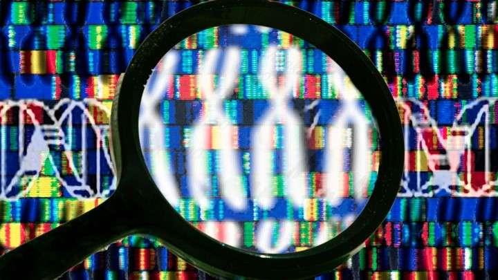 Кому выгодно выращивать ГМО? Мифы о коммерческой выгоде ГМО