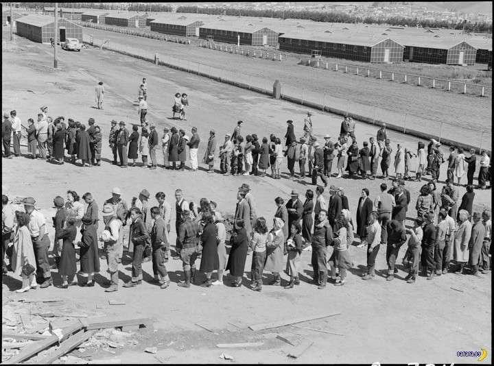 Скрываемый Голодомор в США унес 7 миллионов жизней