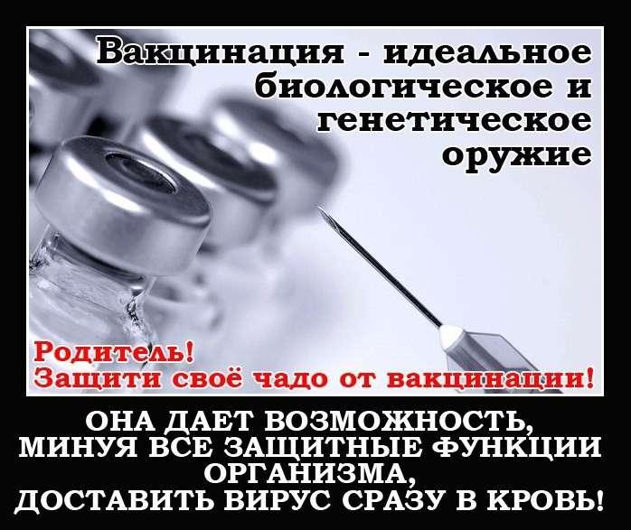 Вакцины вызывают эпидемии. Теория вакцинации базируется на лженауке