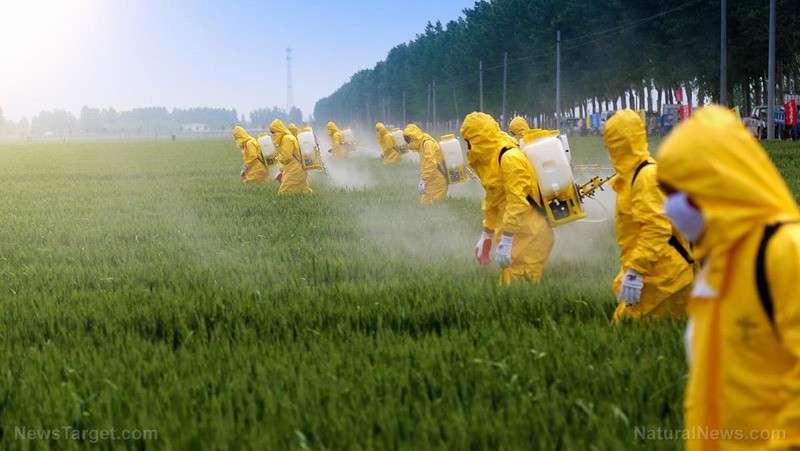 ГМО: 44 причины чтобы полностью запретить этот яд