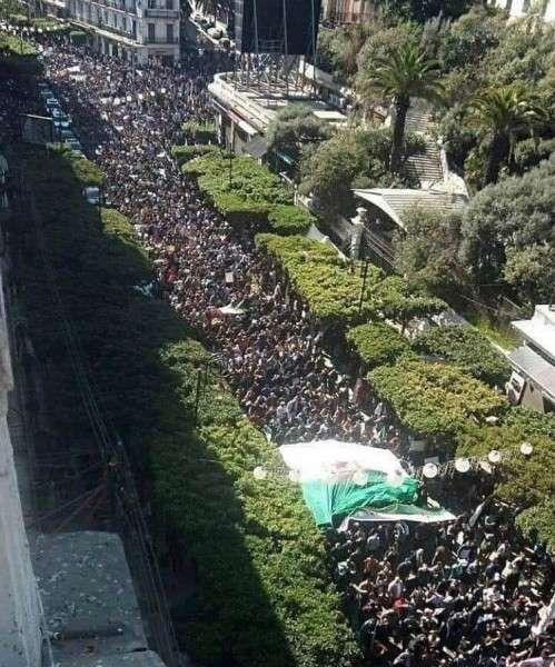 Арабская весна в Алжире по методичке, написанной на английском языке
