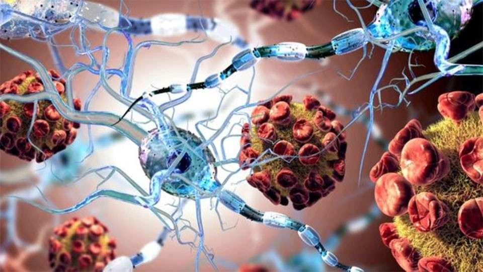 В вакцины добавляют модифицированные раковые гены человека