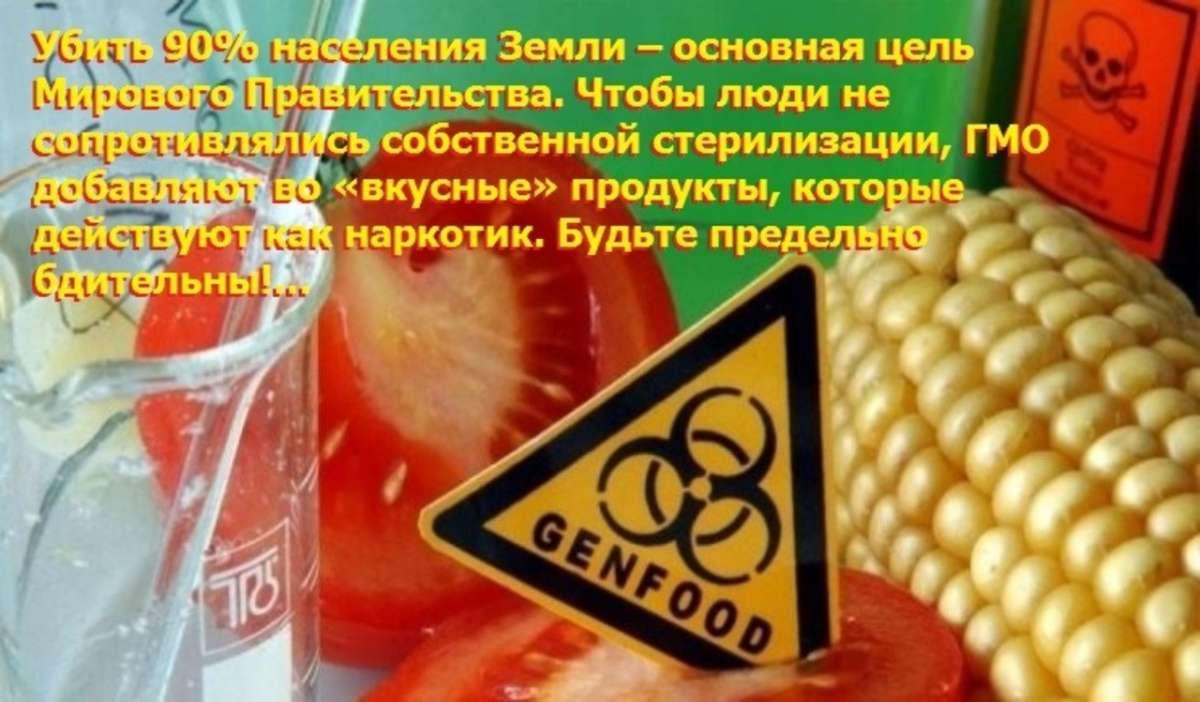 Население Земли будут стерилизовать c помощью ГМО хлопка