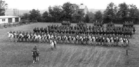 Польша и Германия были союзниками во Второй мировой войне, о чём говорят цифры
