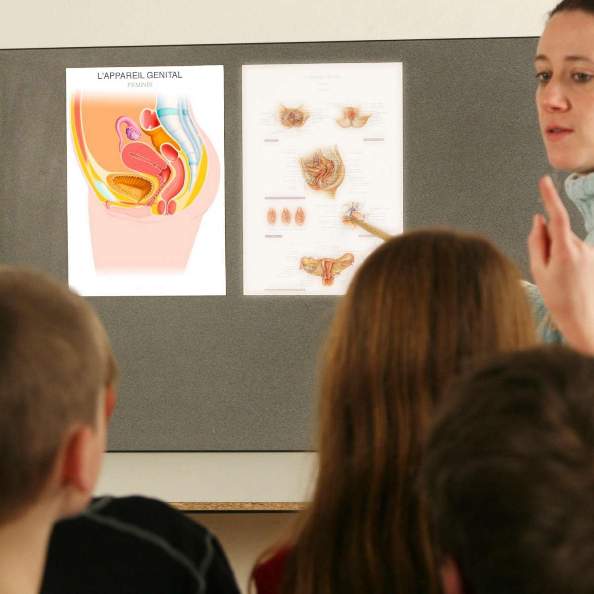 Сексуальное образование в школах России – проект мирового движения педофилов