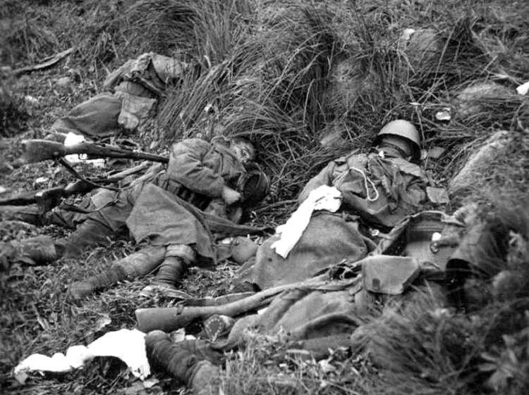 Вся Европа во главе с Гитлером участвовала в геноциде русского народа