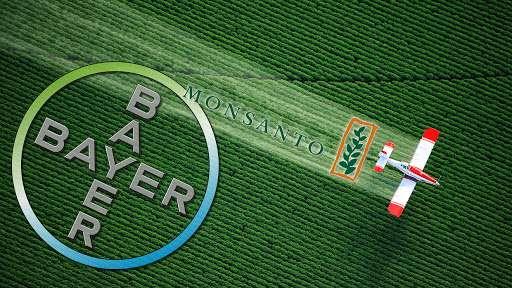 Распространитель ГМО отравы «Монсанто» проиграл в американском суде