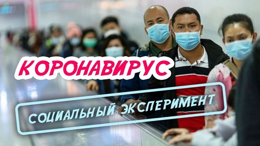 Доктор – Александра Новоселова из Санкт-Петербурга о мерах в борьбе с коронавирусом COVID19