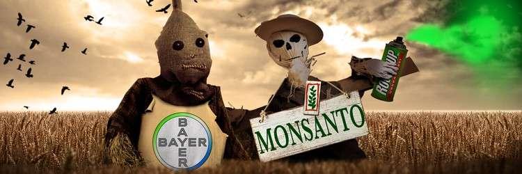 Немецкая ГМО корпорация Bayer прибирает к рукам агрокомпании России