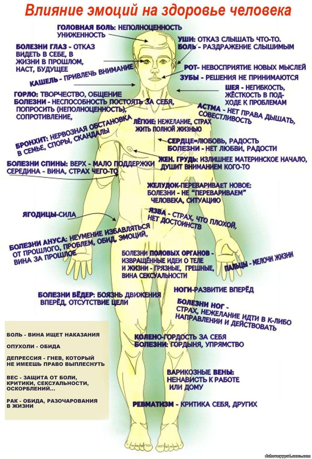Влияние эмоции на здоровье органов наших тел
