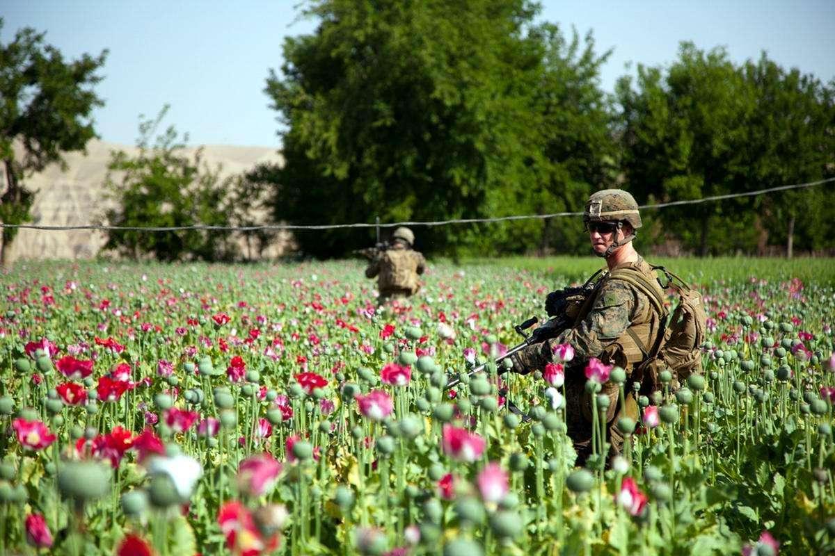Афганские Талибы – враги или партнеры России