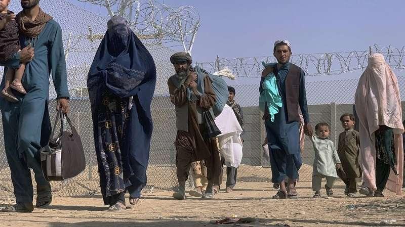Волна мигрантов Афганистана идёт в Европу