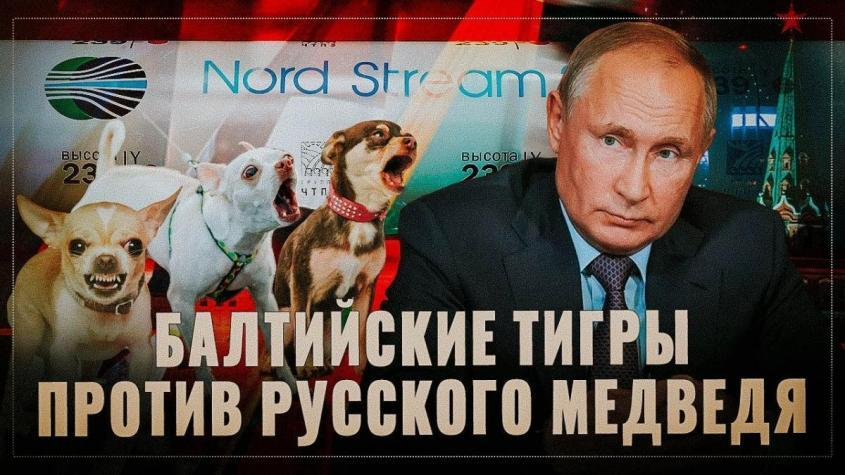 «Хитрый план» Литвы. Прибалтийские шавки против русского медведя