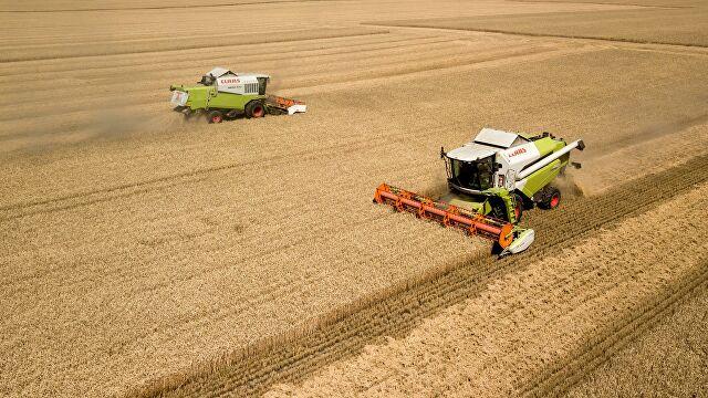 США признали лидерство России на мировом рынке пшеницы