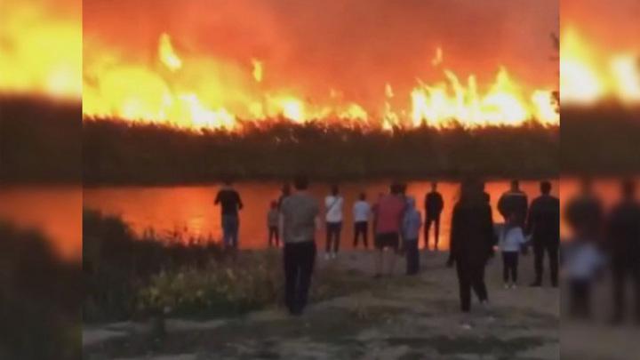В воронежском поселке засняли на видео апокалиптически горящий берег реки