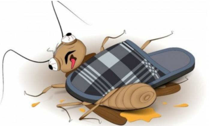 Протесты в Белоруссии 28 сентября – так кто тут «трусливый таракан»?