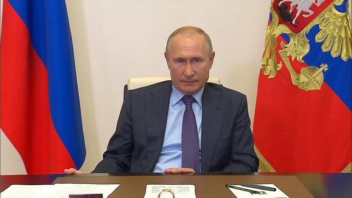 Владимир Путин поручил запретить вывоз из России необработанной древесины