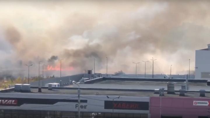 Ландшафтные пожары добрались до Воронежа, огонь уже в городской черте