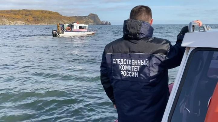 На Камчатке продолжается расследование массовой гибели морских животных