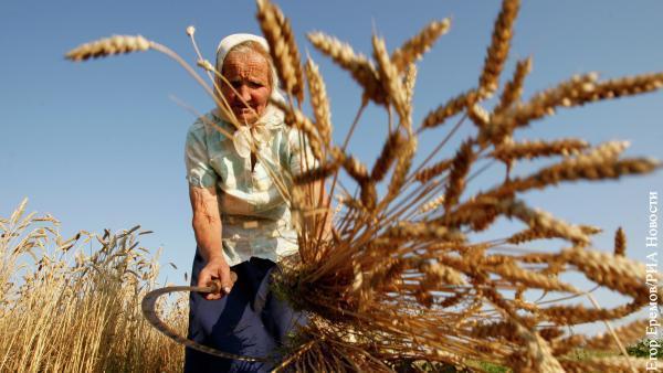 Россия переросла СССР и отнимает рынок зерна у стран Запада