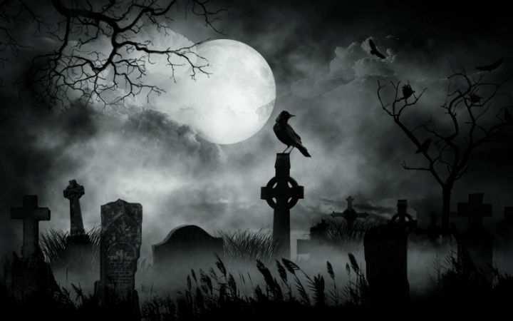 Американской школьнице из-за карантина и плохого интернета пришлось учиться на кладбище