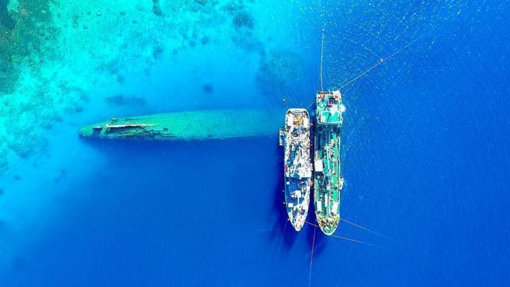 Армия США в течение многих десятилетий отравляла экосистему Тихого океана