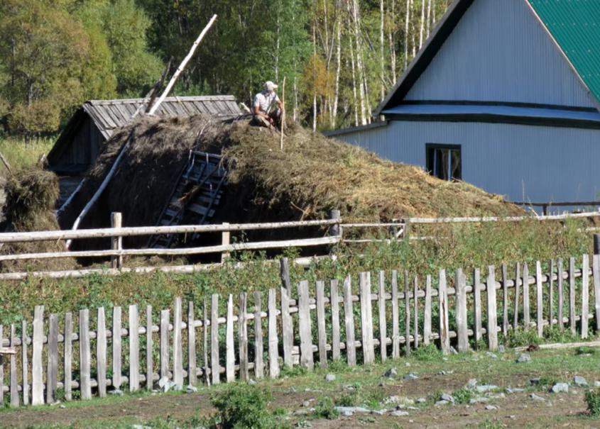 Кто отдал Южный Алтай Казахстану и что стало с тамошними русскими?