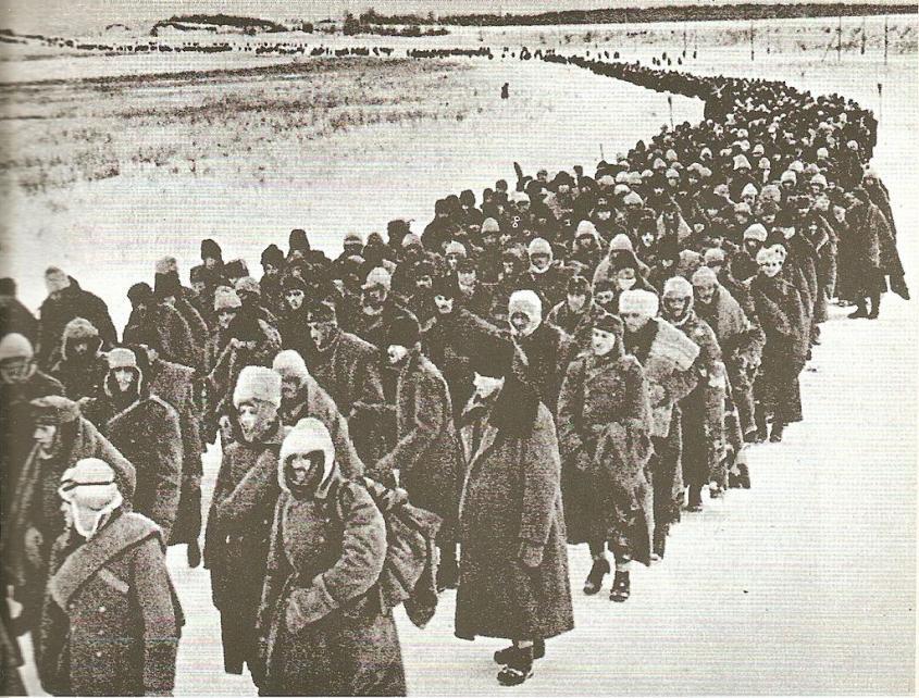 Эль-Аламейн, Сталинград и Курская дуга – какие битвы изменили ход Второй мировой войны?