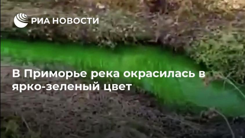 В Приморье река окрасилась в ядовитый ярко-зеленый цвет