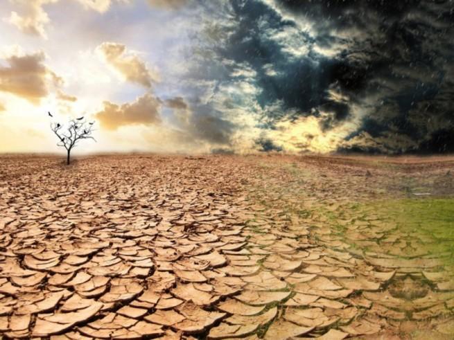 Зачем, нелюдь, правящая нашим миром, превращает нашу планету пустыню?