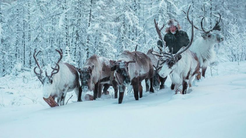 Арбузный снег и черный пляж: 10 необычных путешествий по России