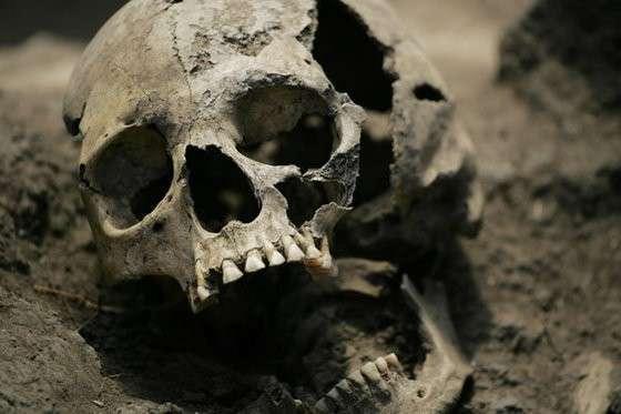 Киев готовит 250 000 могил для своей карательной армии