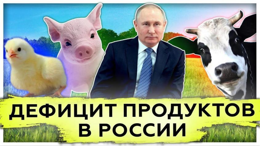 Дефицит продуктов в России. Импортозамещение. Выход на международный рынок