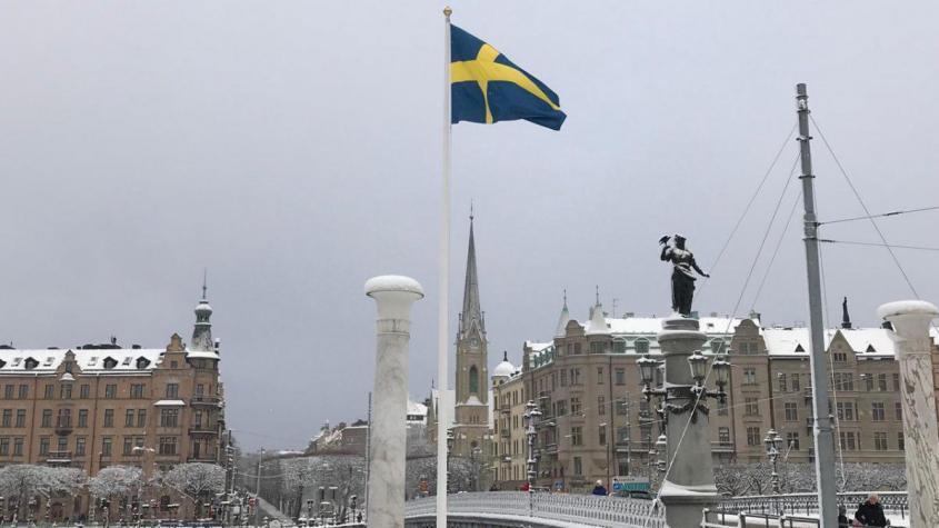 Швеция официально расписалась в своей русофобии