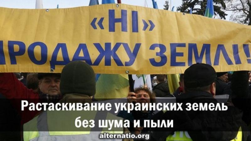 Под крики «русские идут», киевское еврейство растаскивает украинские земли