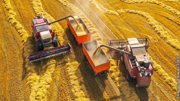Коронавирус помог новым рекордам сельского хозяйства России