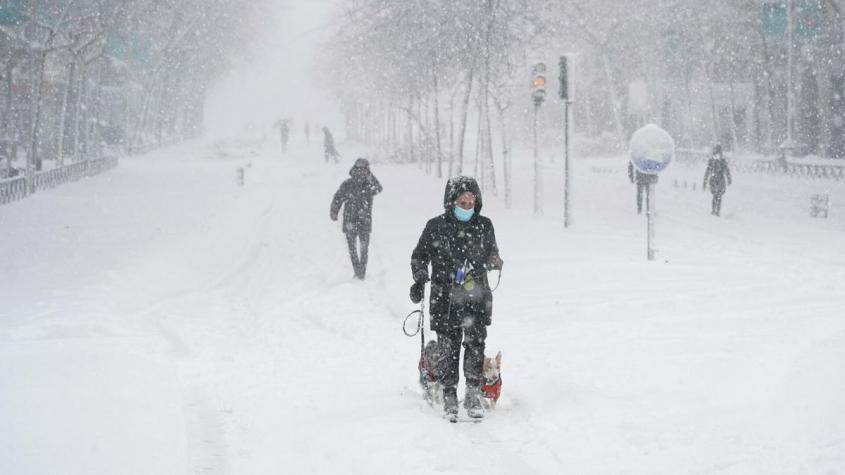 В Испании прошёл самый мощный за 80 лет снегопад