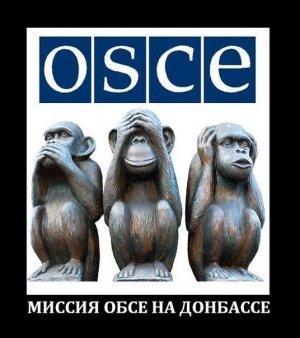 Обращение харьковчан к ОБСЕ: «Для нас вы никто. Пошли вон!»