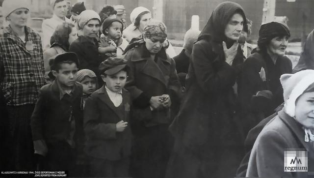 Вновь прибывшие в лагерь Освенцим (Аушвиц)