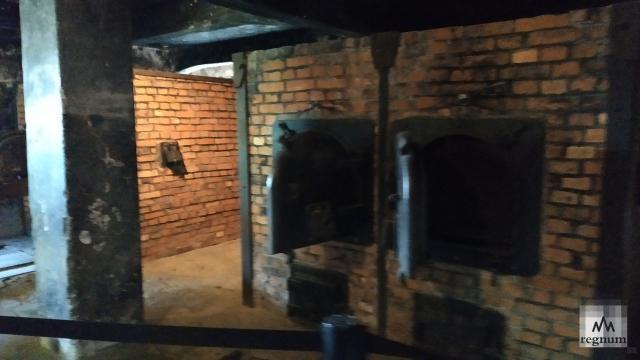 Печь, где сжигали тела. Освенцим (Аушвиц)