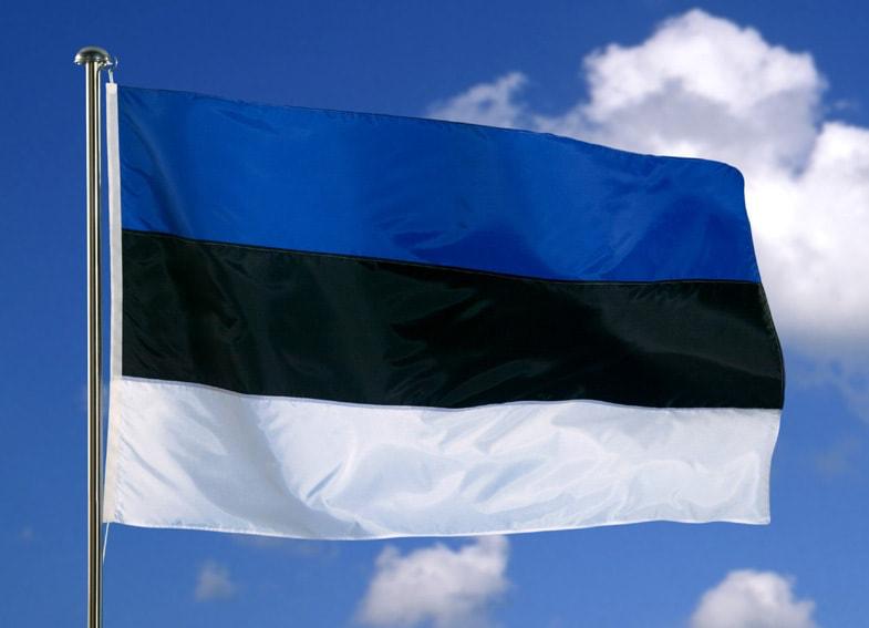 Могучая Эстония нанесёт ответный удар, сокрушив экономические планы Кремля?