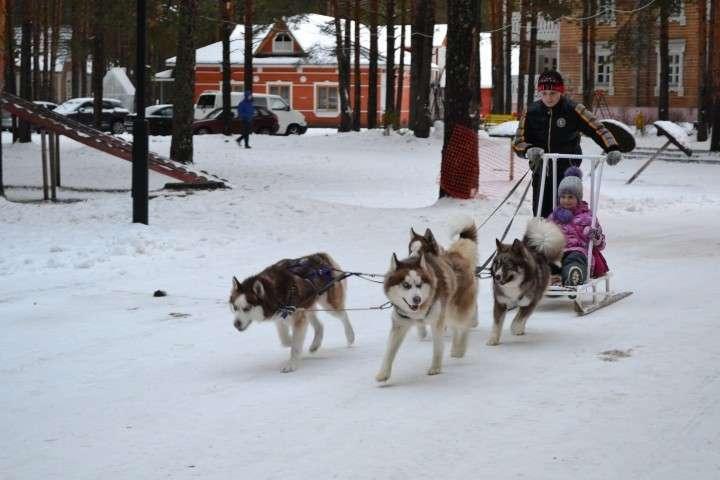 Отдыхаем в России. Новогодняя сказка Великий Устюг