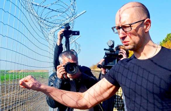 Сеня-кролик Яценюк пискнул из-под шконки о способе «дрессировки» Кремля | Русская весна