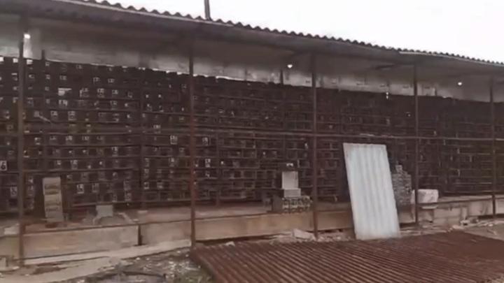 Огромная майнинговая ферма подпольно действовала на чайной фабрике в Абхазии