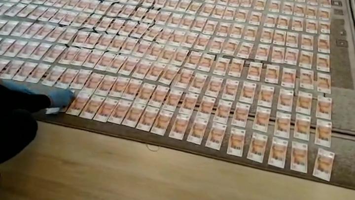Глава алтайского минздрава прятал 6 миллионов в уличном туалете