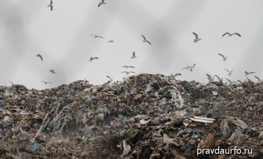 Екатеринбург будет дышать вонью мусорных свалок. Пятая колонна одержала победу