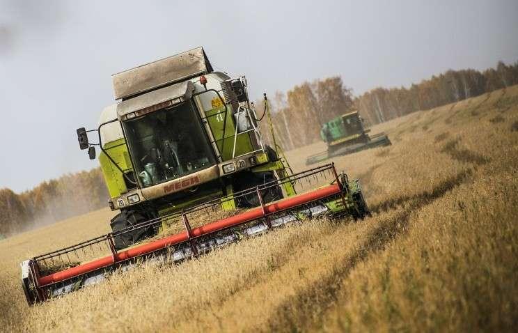 Правительство РФ ограничит экспорт зерна для предотвращения роста внутренних цен