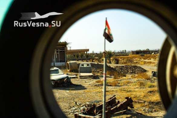Сирия. Разорвать на части: подлые планы врагов | Русская весна