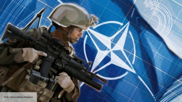 На сайте НАТО появилось предупреждение для украинцев о начале операции Svinosotnya