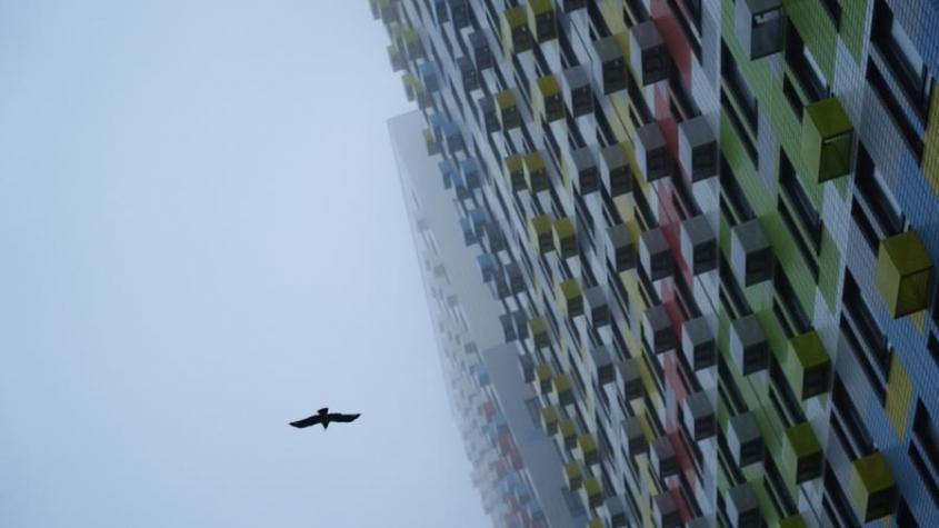 Как избавиться от шума в квартире? Для борьбы с громкими звуками от соседей есть ряд законных мер